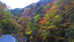 相原橋付近